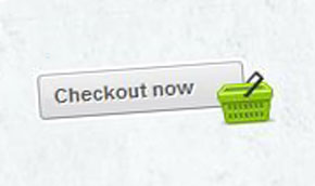 online store checkout button